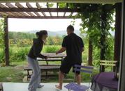 ASANA, PRANAYAMA, MEDITATION with Paula Lynch- July 10 -12
