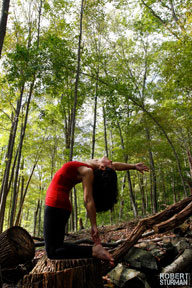 July 11–13, 2014 - Second Annual Iyengar Yoga Retreat with Judi Friedman  Deepen Your Practice: Exploring Effortless Effort